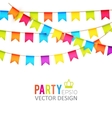 party flags design vector image