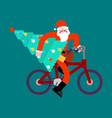 santa claus on bicycle and christmas tree happy vector image vector image