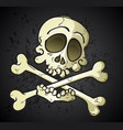 skull and crossbones jolly roger cartoon character vector image