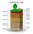 soil1 vector image
