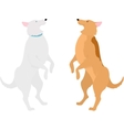 two dogs standing on hind legs vector image vector image