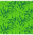 pattern with leaves of tropical plants vector image vector image