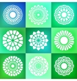 Set of Nine Mandala Ornaments vector image