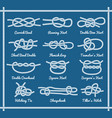 set of rope knots hitches bows bends vector image vector image