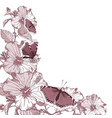various summer flowers vector image vector image
