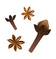 cloves and star anise set vector image