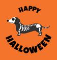 dachshund in skeleton coustume halloween vector image vector image