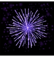 Firework Lights up the Sky on Black vector image