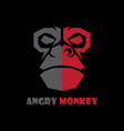 head monkey logo vector image
