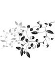 leaf floral vector image vector image