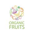 organic fruits emblem vector image
