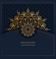 pattern with golden ornament mandala and place vector image vector image