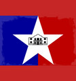 san antonio city flag vector image