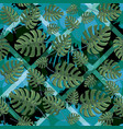seamless monstera leaves pattern vector image vector image