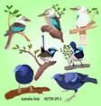 a set of realistis australian birds vector image