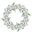 beautiful delicate wreath of daisies frame for vector image vector image