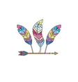 nice arrow with feather design decoration vector image vector image
