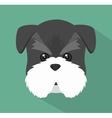 cute dog design vector image vector image
