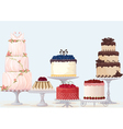 Fancy cakes vector image