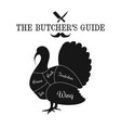 poultry turkey meat cut lines diagram graphic vector image