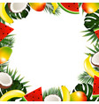 tropical fruit frame vector image vector image