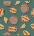 walnut seamless pattern vector image vector image