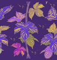 abstract purple vine liana leaves hops vector image vector image