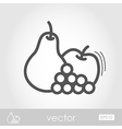 Apple Grapes and Pear outline icon Thanksgiving vector image vector image