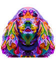 colorful cocker spaniel isolated on pop art style vector image vector image