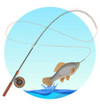 fishing rod with caught fish on hook vector image vector image