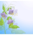 Flowers kobe and blue sky vector image vector image