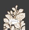 nature template luxury design vector image