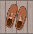 shoe masculine over wooden background vector image