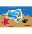 sand with starfish and shells sea and letters from vector image