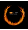 Naturalistic Fire Frame on Dark Background vector image