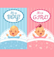 baby shower cards its a boy and girl label cute vector image