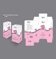 box packaging design vector image vector image