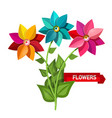 colorful bunch of flowers isolated on white vector image vector image