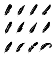 Feather black icons vector image vector image