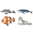 isolated picture sea animals vector image