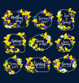 spring flowers bouquets icons vector image