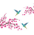 cherry blossom branches vector image vector image