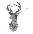 continuous line head of deer vector image vector image