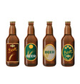 glass beer bottles vector image
