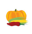 pumpkin corn and pepper vector image vector image