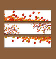 set of three banners with colorful autumn leaves vector image