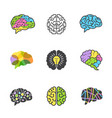brain colored symbols creative mind genius smart vector image