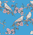 seamless pattern birds on flowering branches vector image vector image