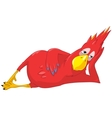 Funny Parrot Relaxation vector image vector image