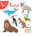 Letter W Cute animals Funny cartoon animals in vector image vector image